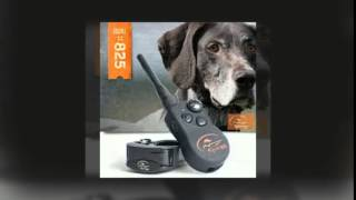 Sportdog Training Collars By Pet Store Unlimited