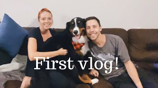 Bernese Mountain Dogs Morning And Night Routine | Vlog 1
