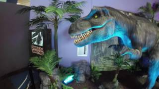Dinosaurs Unearthed at the Los Angeles Discovery Cube!!