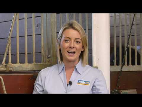 Managing the Equine Gut for Optimal Health and Performance