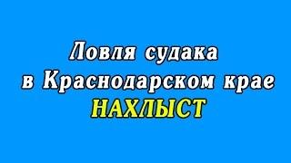 Ловля судака в Краснодарском крае - НАХЛЫСТ