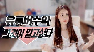 ★유튜브 수익 낱낱이 알려드릴게요★ (+댓글설명 추가)