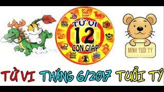 Tử Vi Tuổi Tý Tháng 6 Năm 2017: Xem Bói Tử Vi 12 Con Giáp 2017 thumbnail