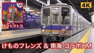 けものフレンズ & 南海みさき公園 コラボヘッドマーク【4K】