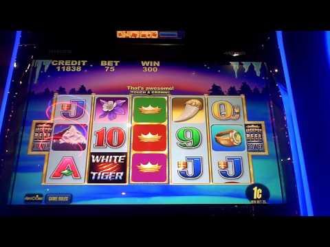 slot machine wins 2014