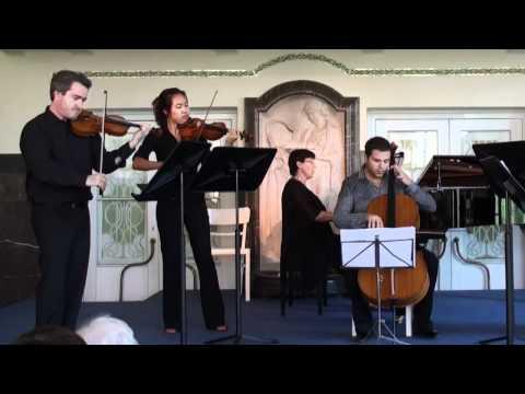 Vivaldi D minor Double Concerto - i. mvmt.