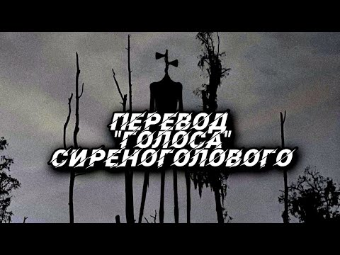 Перевод \