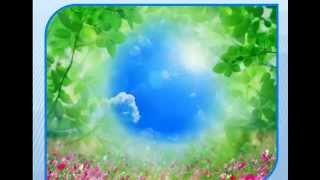 видео Буклеты По Экологии Для Детей