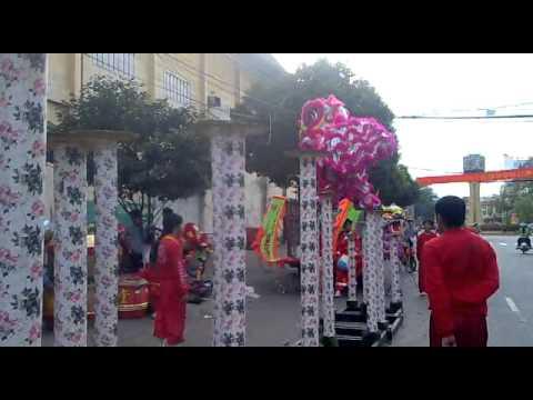 Lan len mai hoa thung 2011 - lsr Vy Anh Duong