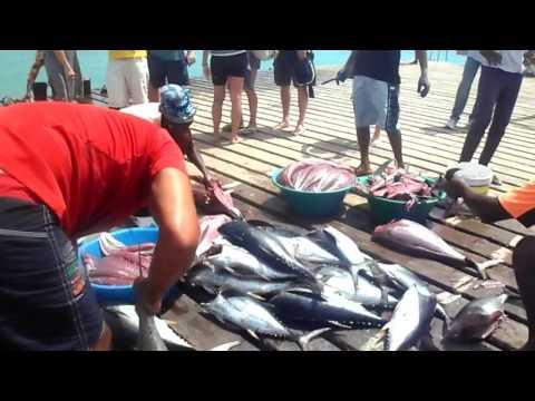 Santa Maria Pier Cape Verde