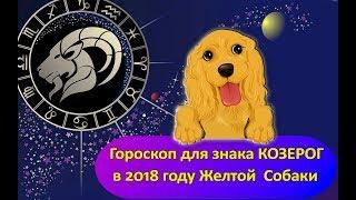 Гороскоп знака Зодиака КОЗЕРОГ на 2018 год Желтой Собаки