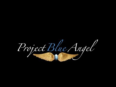 Project Blue Angel Announced!