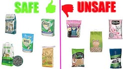 Safe & Unsafe Litters For Rats!