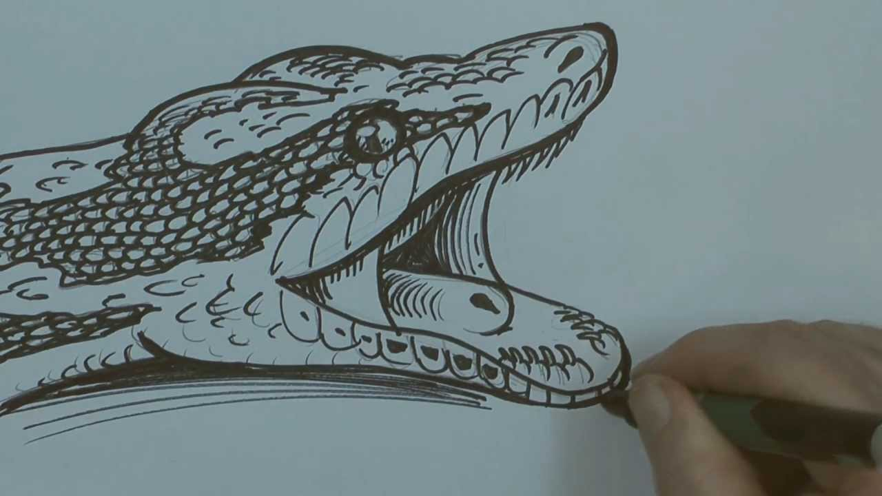 How To Draw Using Python