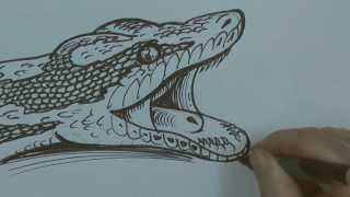 Speed Video - Python Drawing