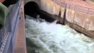 idukki periyar idamalayar Dam opening