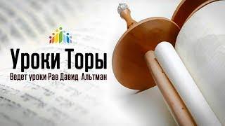 Уроки Торы с р.Давидом Альтманом - Цепочка передачи Традиции