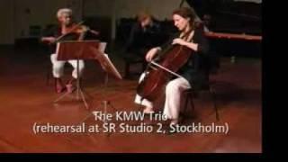 The KMW Trio: Ylva Skog, Piano Trio