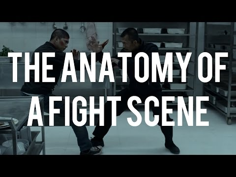 The Anatomy of a Fight