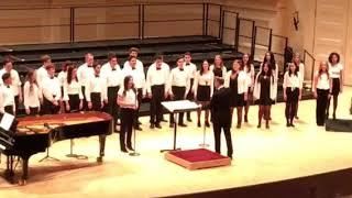 Video Lynbrook High School Concert Choir Hallelujah At Carnegie Hall download MP3, 3GP, MP4, WEBM, AVI, FLV September 2018