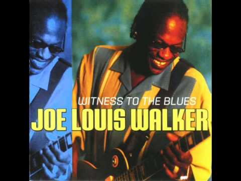 joe louis walker- it's a shame.wmv