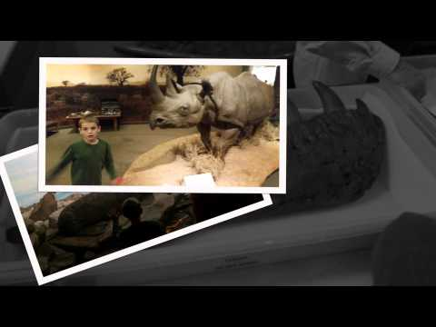 Carnegie Museum of Natural History: Family Trip