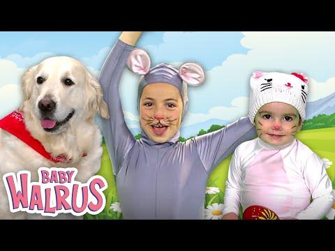 Cute Puppies & Kittens | Pet Nursery Rhymes by Zouzounia TV