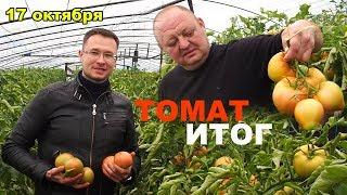 видео Выращивание овощей  (Огород) / Поиск по тегам / Страница 6 / Мои дачи