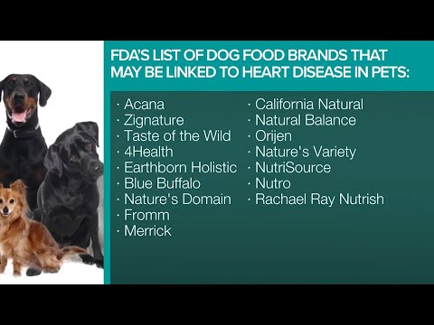 Pet Owners Concerned Over Potential Link Between Pet Food And Dog Deaths