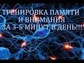 Как развивать память  Тренировка памяти и внимания