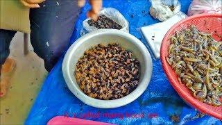 Muang song laos market
