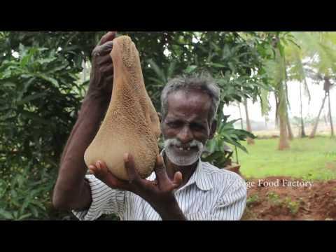 Daddy prepare a full Goat Intestine masala in my village / VILLAGE FOOD FACTORY