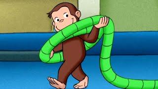 Jorge el Curioso en Español 🐵¿Cuánto Necesita Jorge para Ganar? 🐵 Caricaturas para Niños