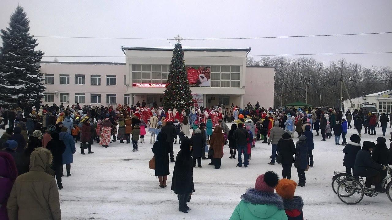 Открытие Главной Городской Ёлки. Зерноград. развлекательная программа стартинейджер