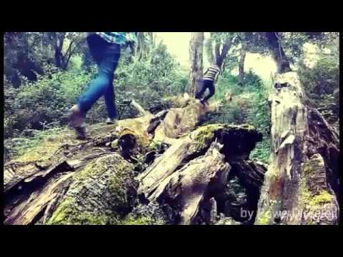 The Beginning -  An Infinity Short Film