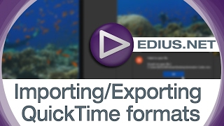 EDIUS.NET Podcast - Importing/Exporting QuickTime formats