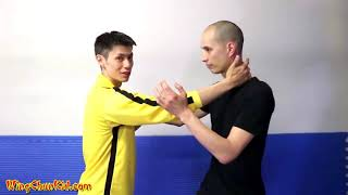 9 Wing Chun Dummy Training Techniques-Mook Jong