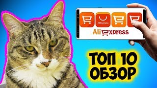 Топ 10 Гаджетов для Кота с Алиэкспресс Обзор от Кота Тигры | Pet Cat