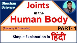 Types of joints in the human body - Anatomy & Examples in Hindi (PART-1) |Bhushan Science