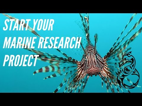 How To Run Marine Science Projects Pt. 1 - Marine Biology And Conservation In Greece