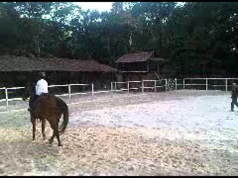 Tajuddin Ahmad Menunggang Kuda