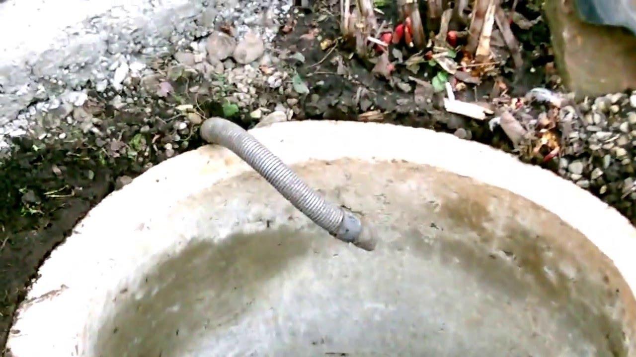Дождевой червь своими руками фото 954