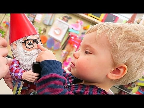 OLLIE KNOWS GNOMES' NOSES!