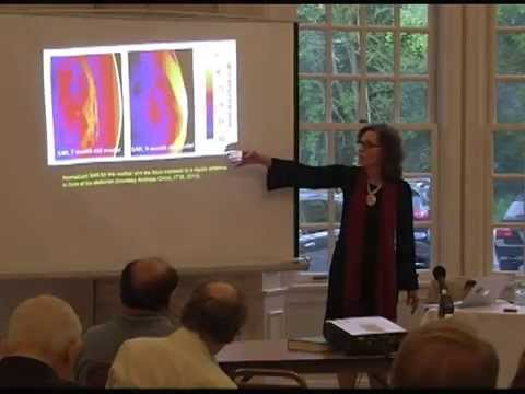 Dr. Devra Davis, Ph.D in Framingham, MA talks about wireless radiation