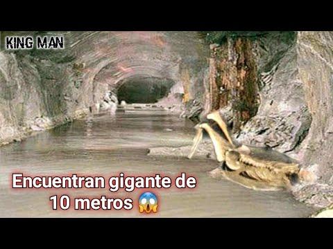 Encuentran gigante de 10 metros en Rumania debajo de la aldea de Cornea junto a pozo misterioso ?
