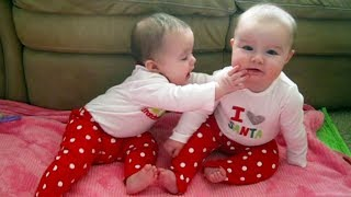 Cute and funny twin babies - Christmas twin babies