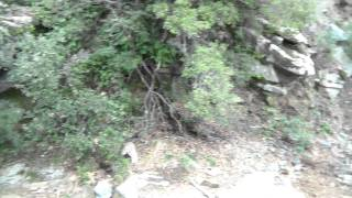 Паломничество на Афон (видео 2)(В декабре 2011 года я совершил паломничество на Афон. Некоторыми впечатлениями делюсь на Youtube., 2012-01-09T14:42:26.000Z)