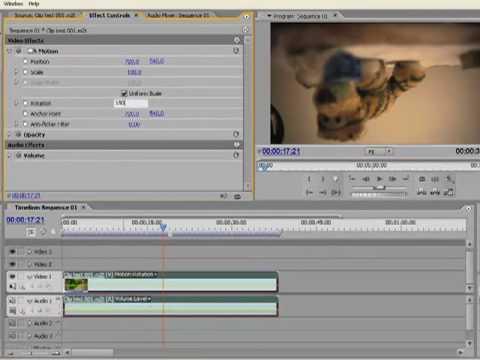 Flip video, Rotate clip 180° in Premiere Pro - ita audio, english callouts