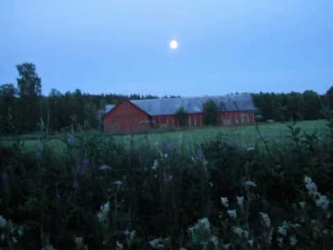 Ivory Joe Hunter - Blues at Sunrise