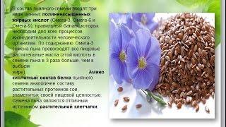 Семена льна   лечебные свойства
